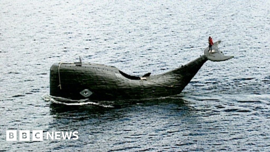 Tom McClean: The man who still dreams of crossing Atlantic in a whale