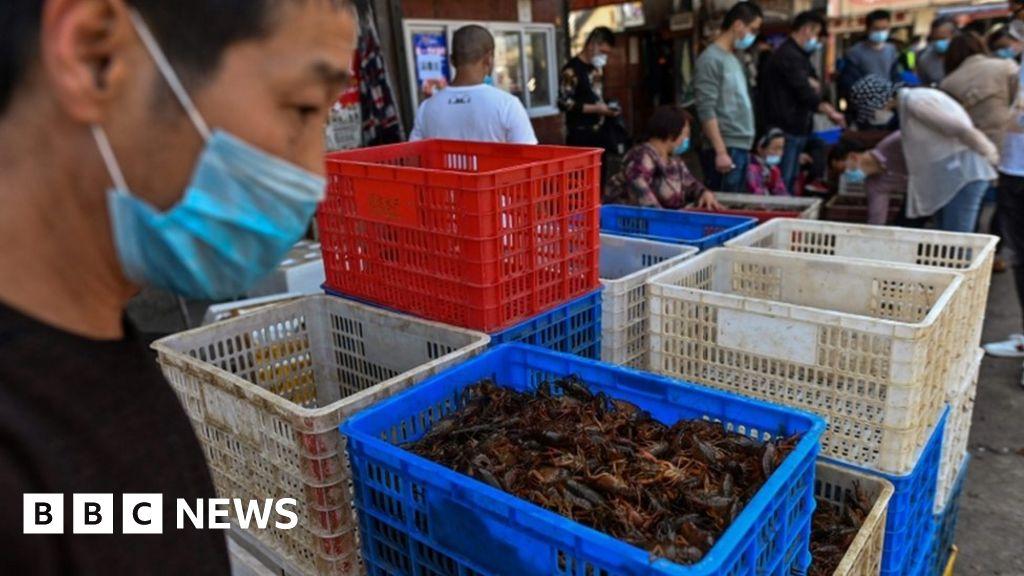 Coronavirus: Australia calls for G20 action on the wildlife in wet markets