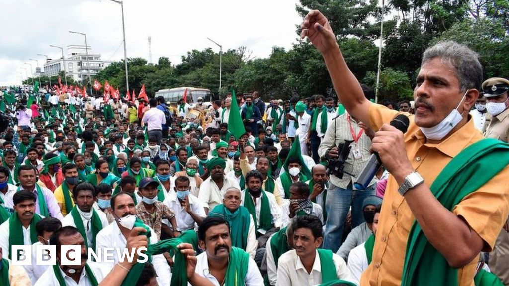 Why India farm reforms have sparked protests