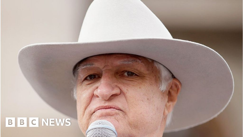 97e317f0 The eccentric MP who is Australia's new powerbroker - BBC News