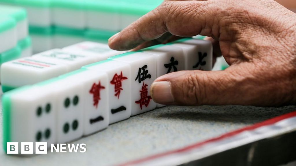 Mahjong Police Clamp Down On China S Most Loved Game Bbc News,Pet Snakes For Kids