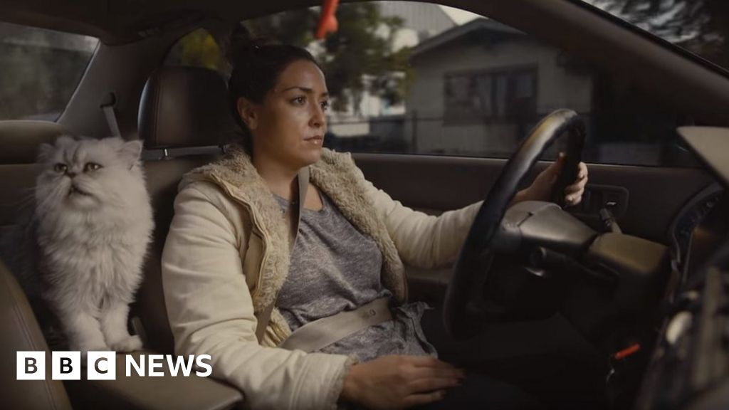Price soars after filmmaker's spoof used car ad goes viral
