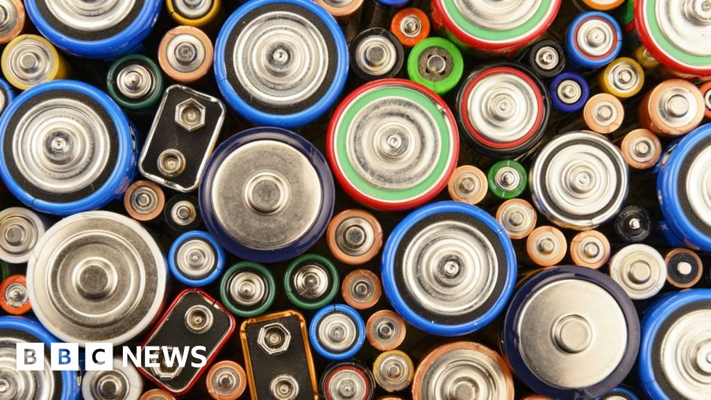 Battery bonanza: From frogs' legs to mobiles and electric cars