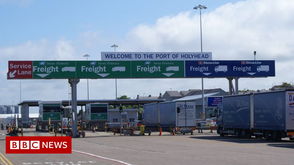 Brexit: Welsh ports increasingly bypassed by Irish ferries