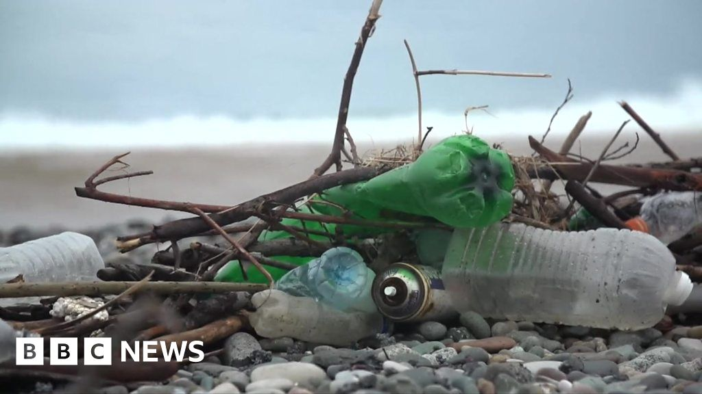 The Black Sea Can Europe S Most Polluted Sea Be Saved Bbc News