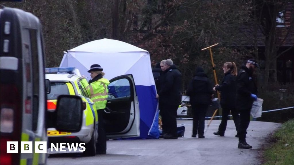 Organised crime  probe over Elstree and Barnet deaths