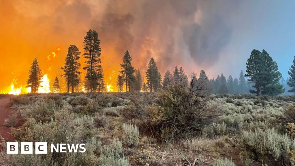 Oregon Bootleg Fire: Evacuations as largest US fire burns 300,000 acres