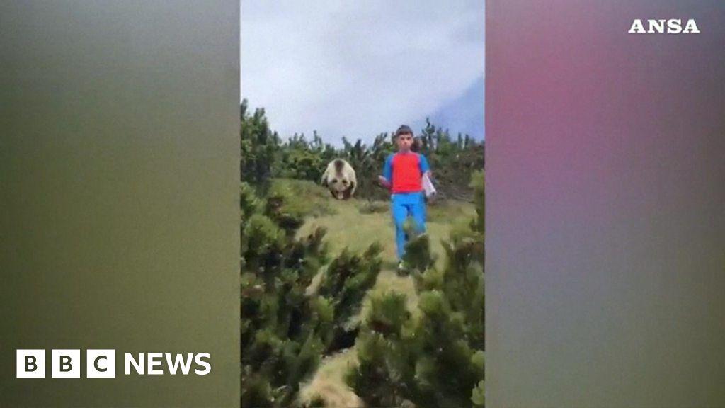 Boy, 12, followed down mountain by brown bear
