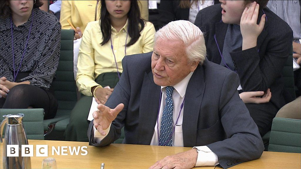 Attenborough: 'To chuck plastic into the ocean is an insult'