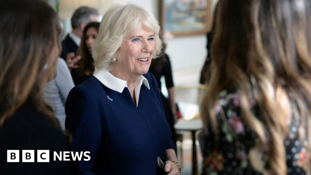 Domestic abuse 'affects everybody' - Camilla