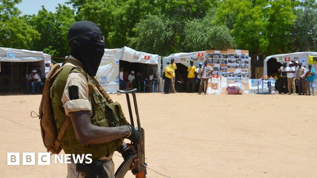 At least 20 killed in Niger aid stampede