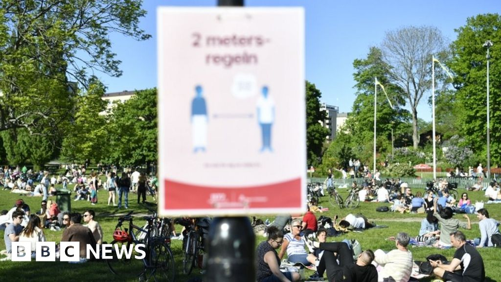 Sweden admits it could have battled virus better