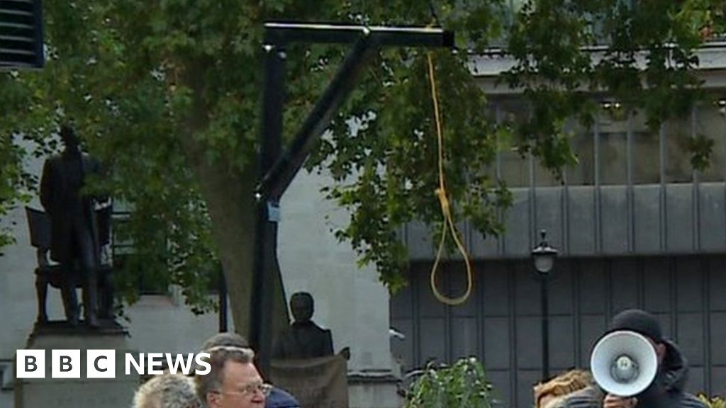 Arrest after mock gallows erected outside Houses of Parliament