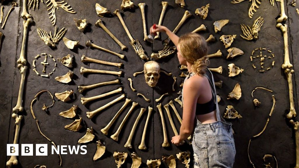 Real Bodies Exhibition Causes Controversy In Australia Bbc News