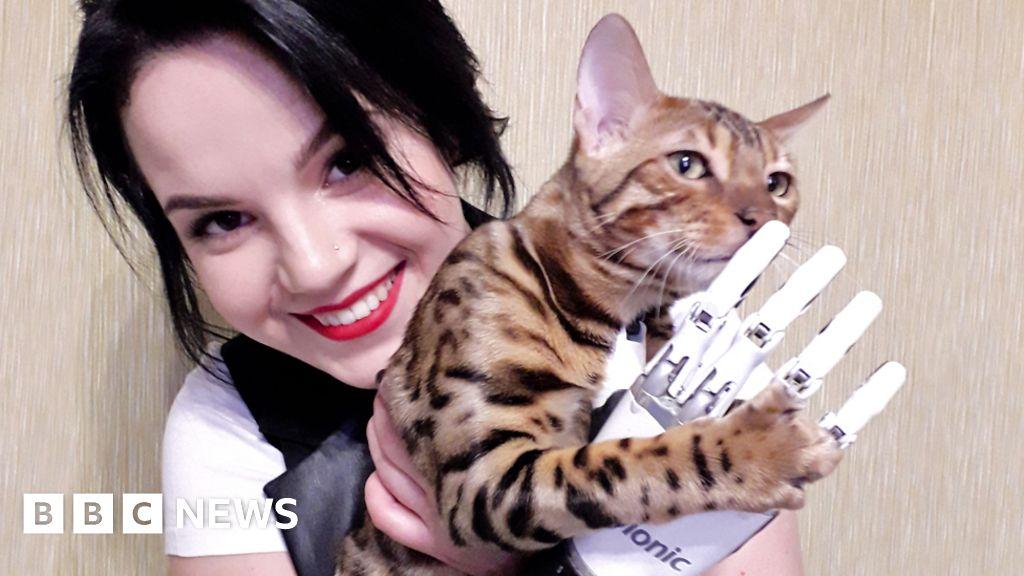Russian domestic violence: Women fight back