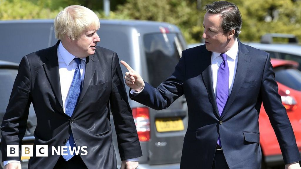 Johnson backed Leave to 'help career' says Cameron