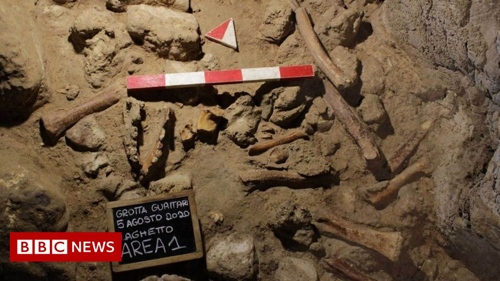 Neanderthal remains unearthed in Italian cave – BBC News