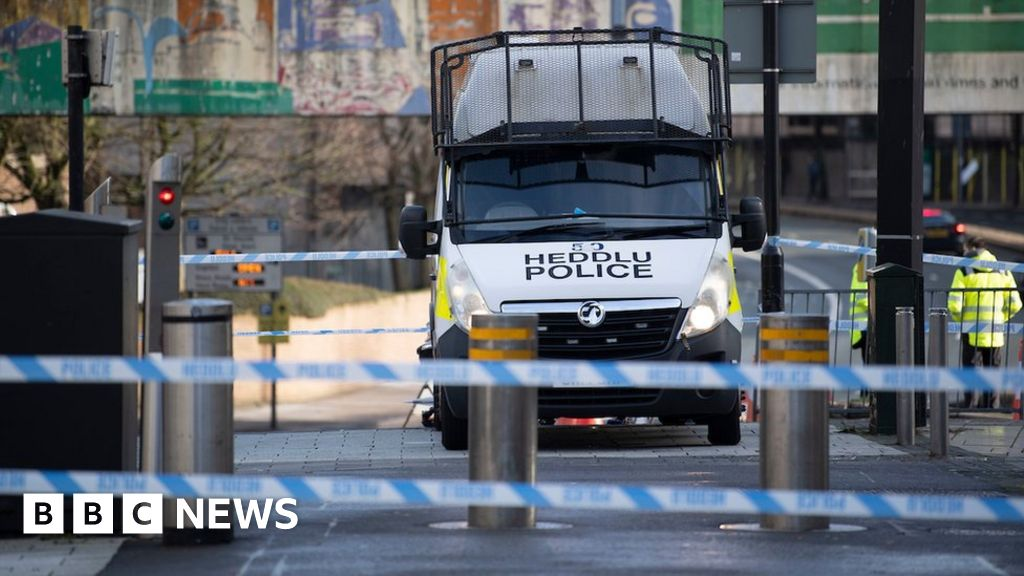 Cardiff violence: Six hurt in disorder and stabbings