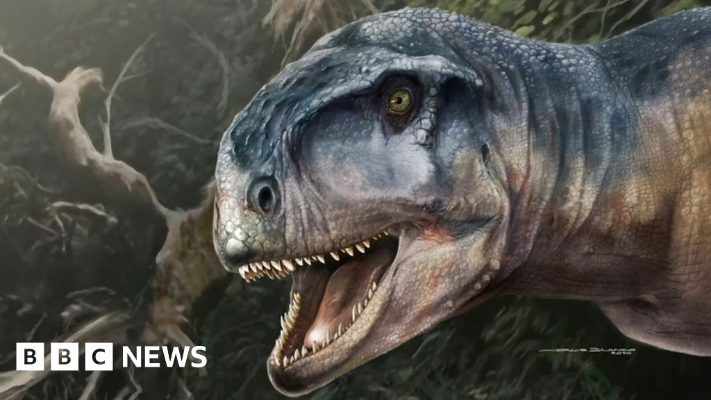 Skull of dinosaur called 'one who causes fear' found in Patagonia  image