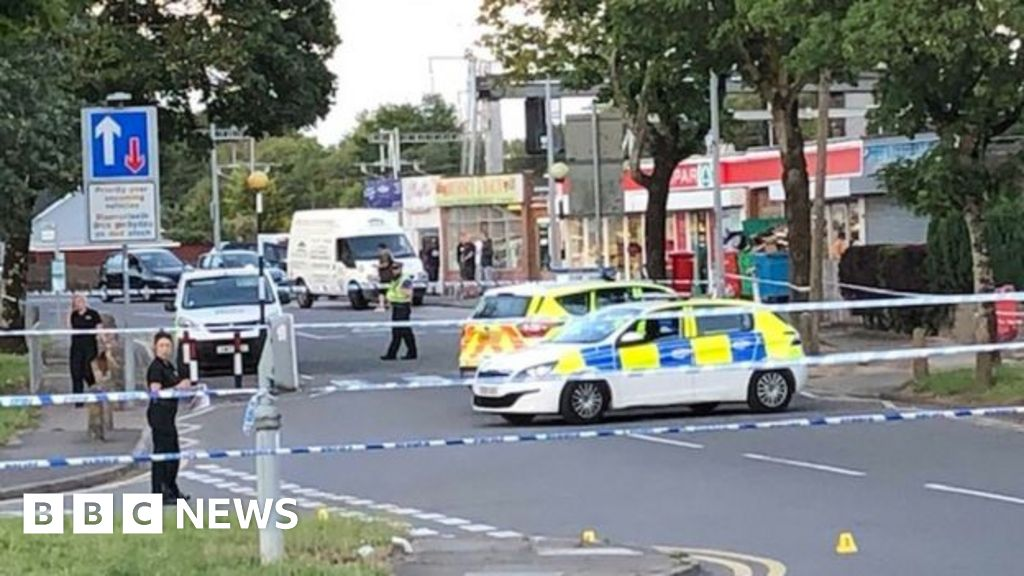 Cardiff 'gunshots' reports: Two more arrests - BBC News