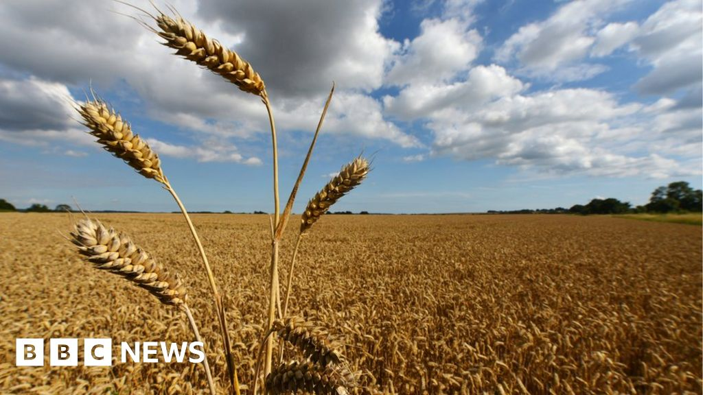 Countryside improvements fund 'could be raided'