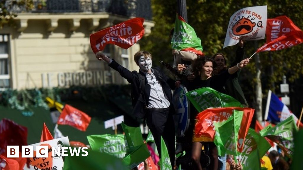 France IVF bill: Protests gather thousands in Paris