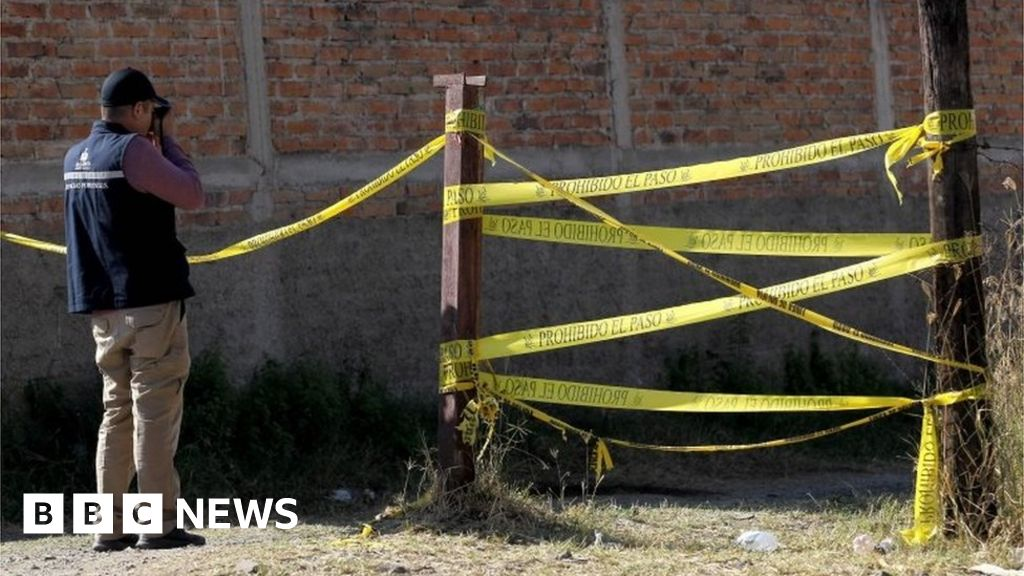 Mexico mass grave holding 29 bodies found near Guadalajara thumbnail