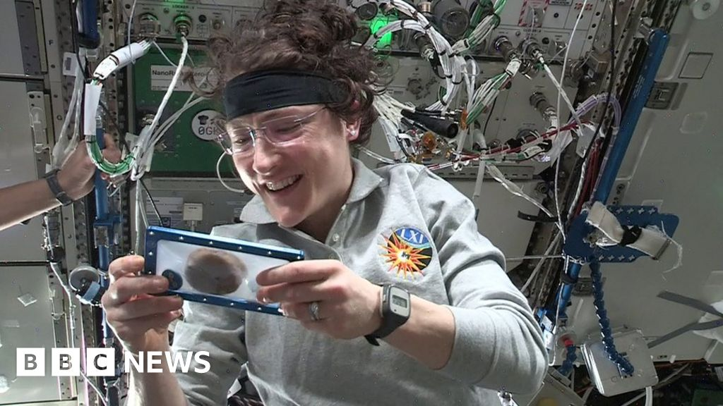 First cookies baked in space oven by astronauts