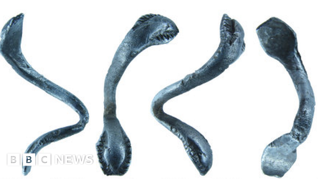 'Exciting' Roman snake ring declared treasure