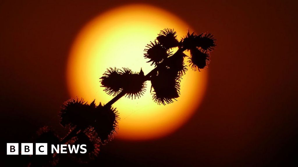 in-pictures-hot-weather-returns-to-the-uk
