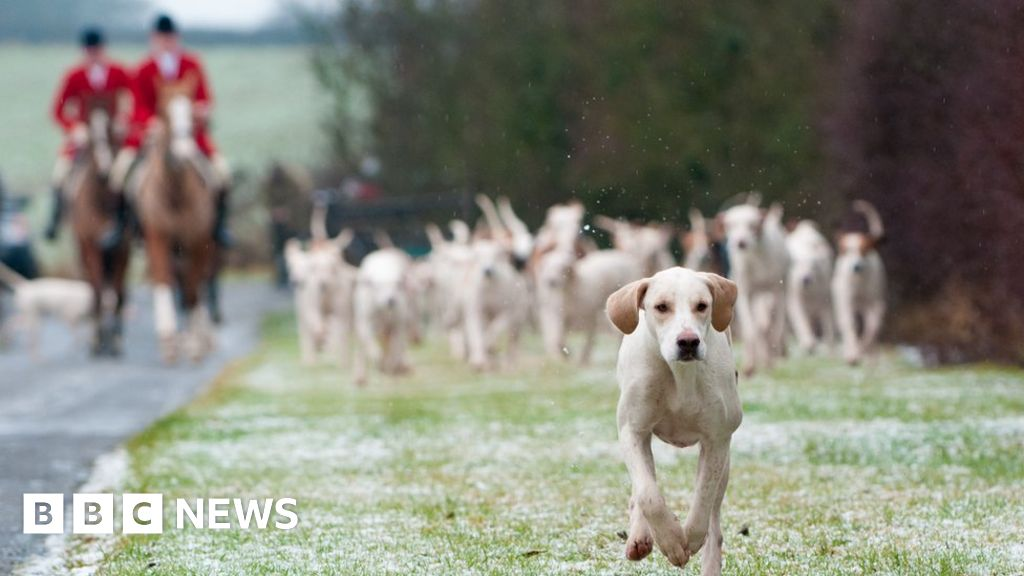 Call for end to Boxing Day hunts