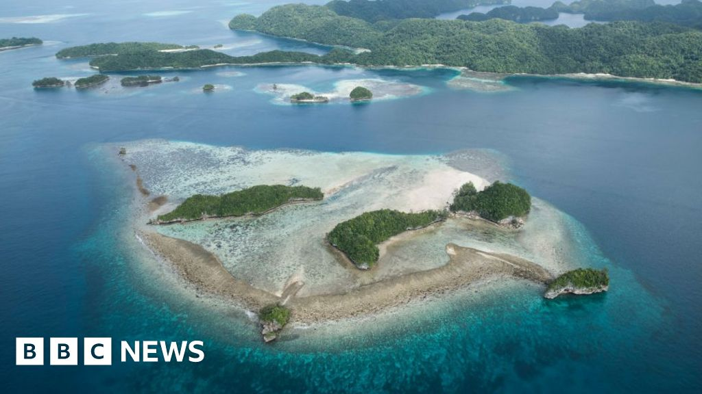 """Palau is the first country to ban  reef toxic"""" sun-cream"""
