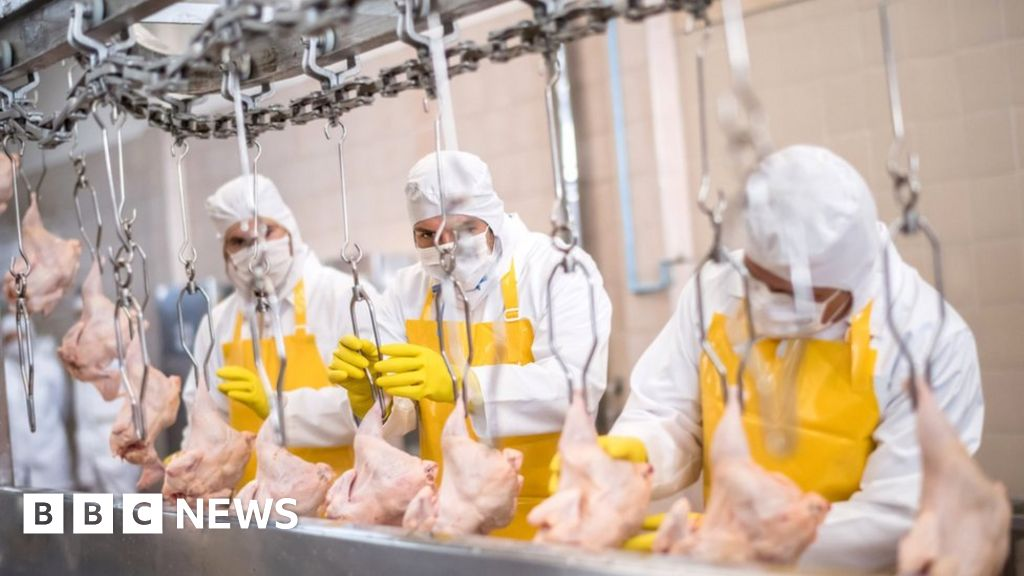 Coronavirus: Why were there so many outbreaks in meat-processing plants?