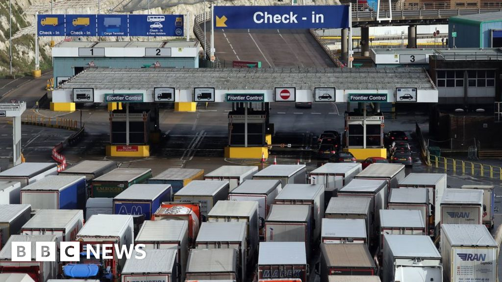 Covid-19: 'Serious disruption' feared as Dover halts traffic to France