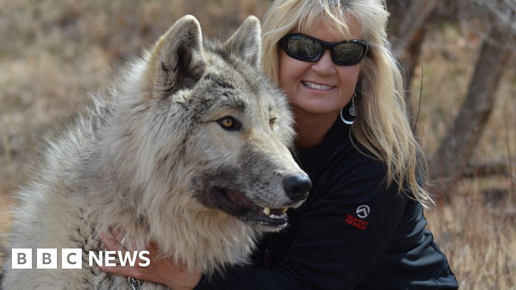 Why this woman hates to hear about 'big bad wolf'