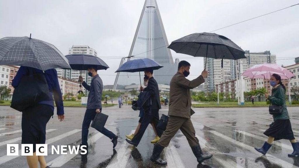 North Korea on alert over 'first suspected coronavirus case'