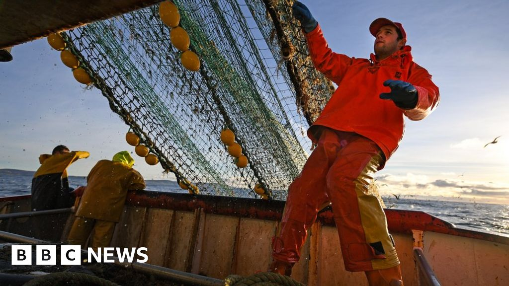 Brexit: Email slip-up reveals no-deal fishing patrol  uncertainty