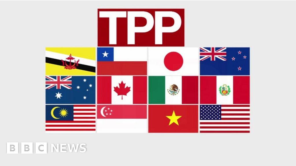 Trans Pacific Partnership Vast Trade Deal Made Public Bbc News