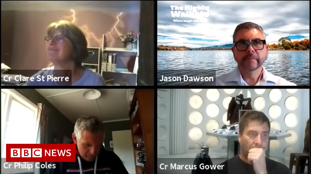 A New Zealand council's Zoom meeting has been viewed more than 290,000 times on YouTube as people use it to pretend to take part and avoid being