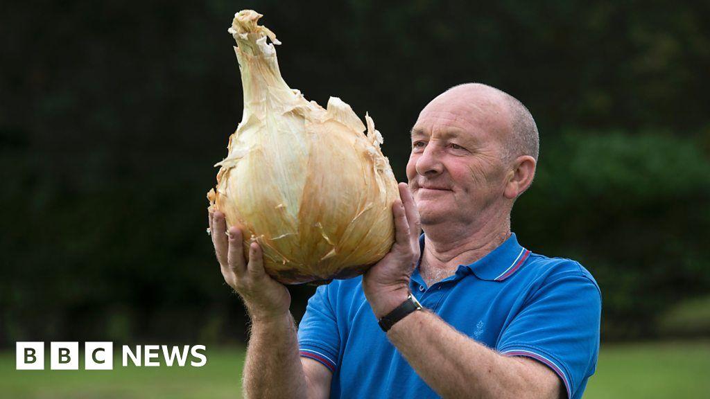 Man's giant vegetables set new world records thumbnail