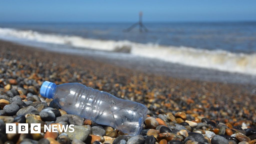 90.5% of plastic waste has never been recycled. That fact has been named 2018's statistic of the year