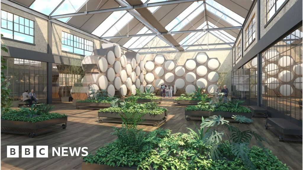 How do you compost a human body - and why would you? - BBC News