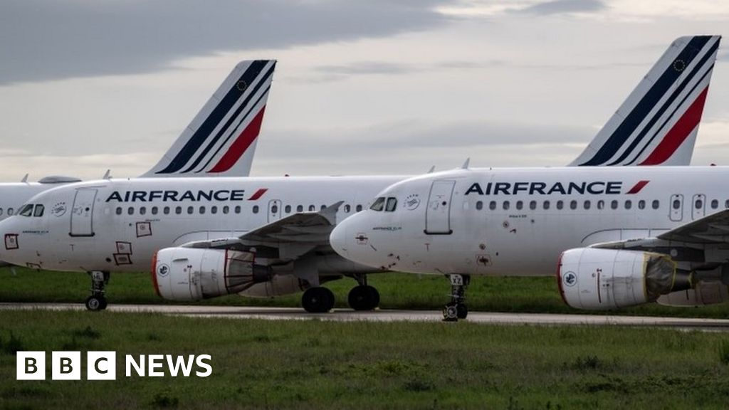 Coronavirus aid: Air France 'must cut domestic flights to get state loan'
