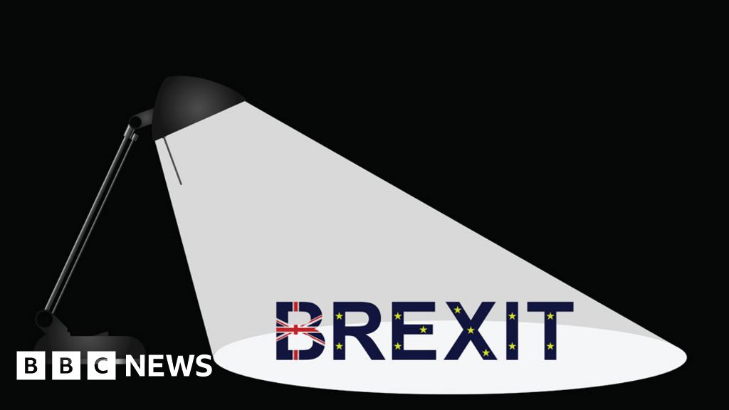 Brexit: What is the Irish border backstop? - BBC News