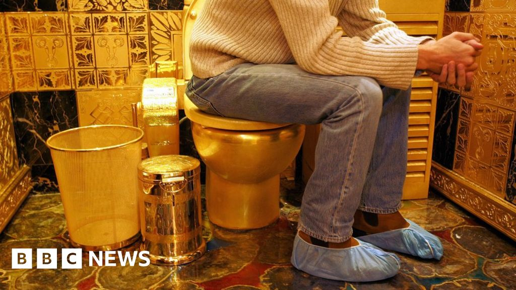 Serial poopers: What makes people poo in public places