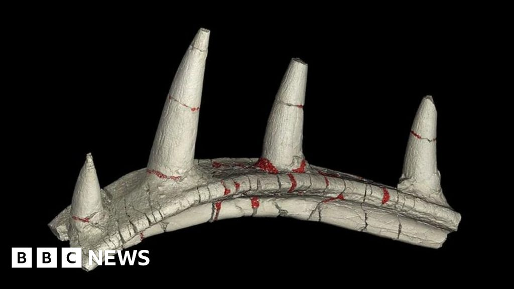Strange spiked dinosaur bone excites scientists