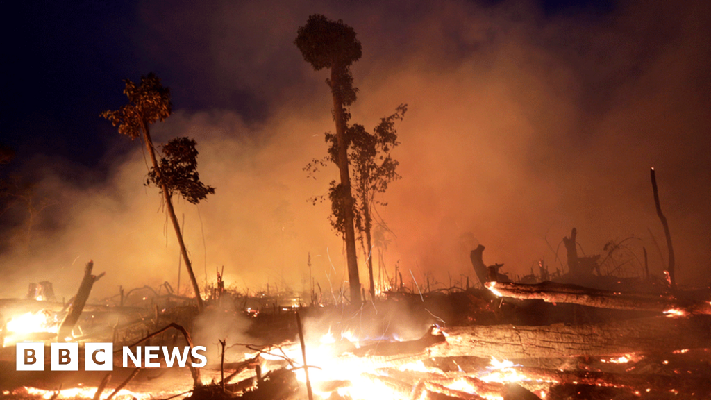Are fires in the Amazon and elsewhere getting worse?
