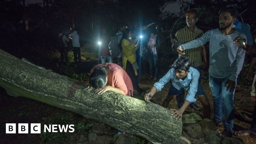 Aarey protests: Supreme Court steps in to save Mumbai trees after protests