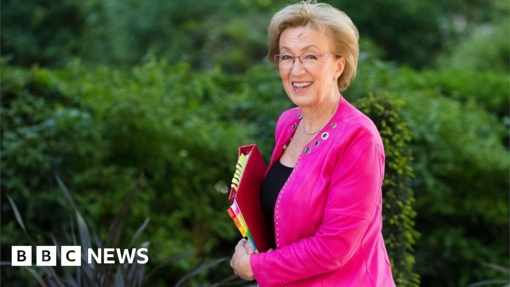 Commons leader quits government over Brexit