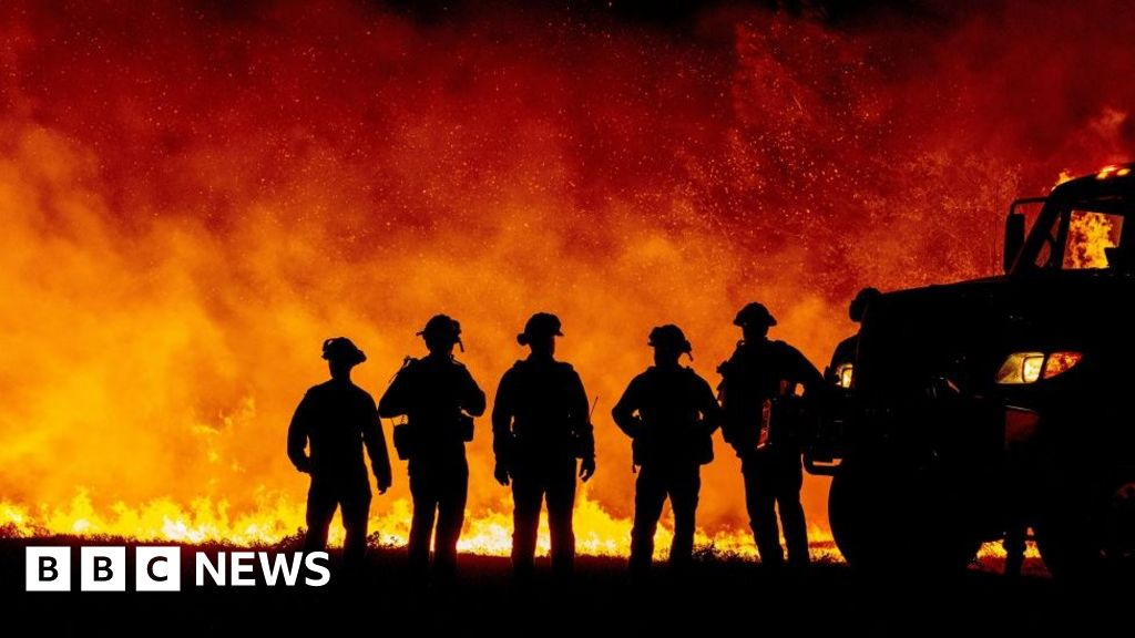US West Coast fires: Is Trump right to blame forest management?